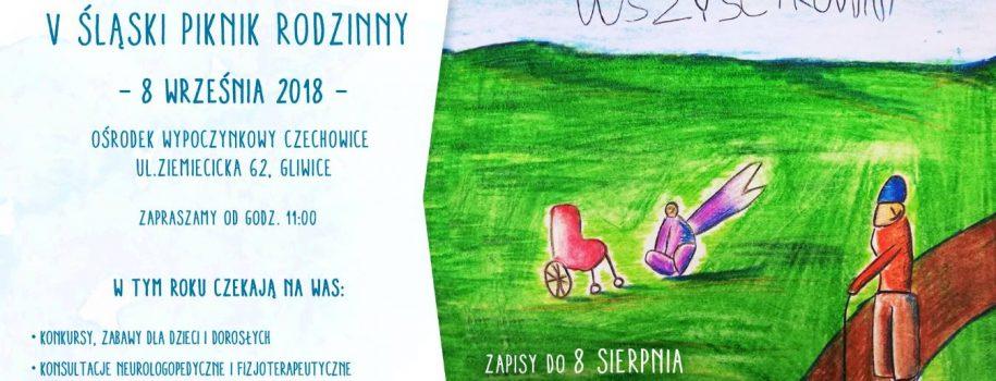 """V Śląski Piknik Rodzinny """"Chcemy całego życia!"""""""